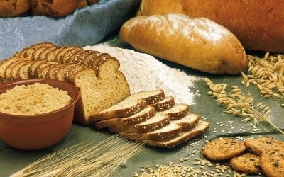 Bread: A common sense guide to health and diet